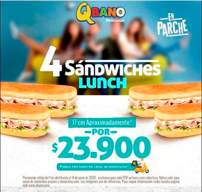 COMBO-4-Sandwiches-Lunch-17-cms-153-1-4